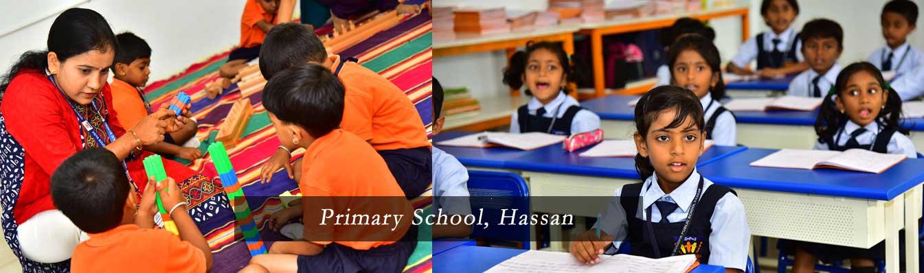 Primary-Hassan